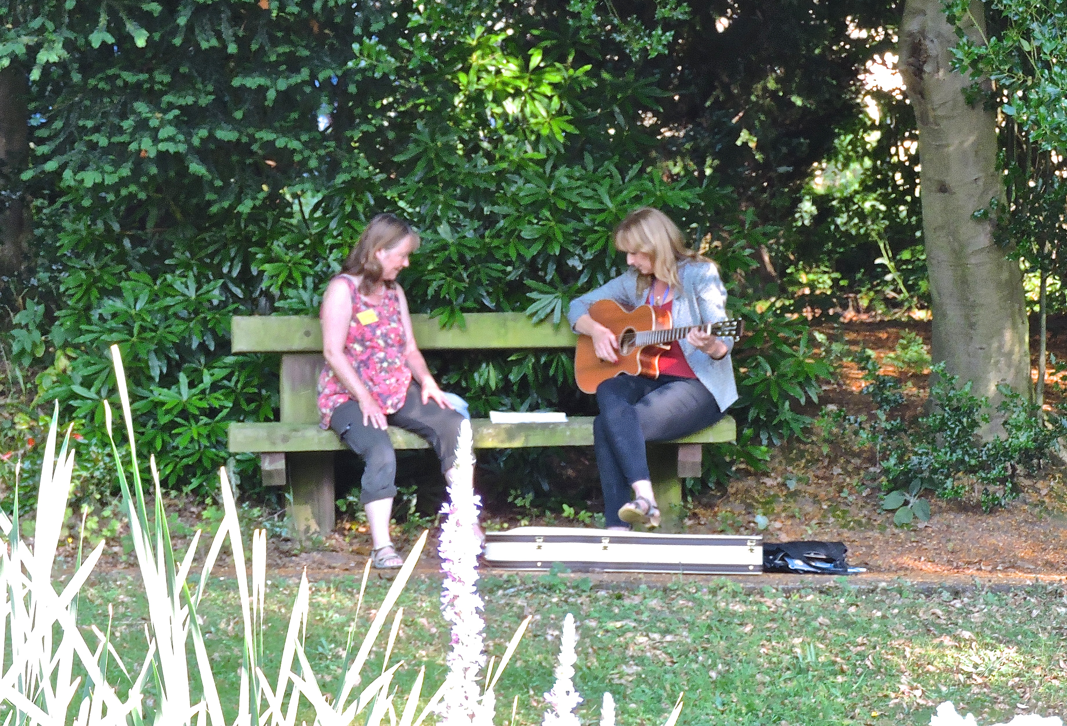 Della guitar